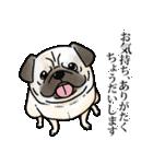 かしこまり犬~ダイバーシティ編~(個別スタンプ:15)