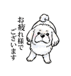 かしこまり犬~ダイバーシティ編~(個別スタンプ:16)