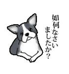 かしこまり犬~ダイバーシティ編~(個別スタンプ:18)