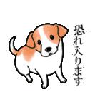 かしこまり犬~ダイバーシティ編~(個別スタンプ:20)