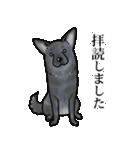 かしこまり犬~ダイバーシティ編~(個別スタンプ:21)