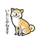 かしこまり犬~ダイバーシティ編~(個別スタンプ:23)