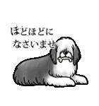 かしこまり犬~ダイバーシティ編~(個別スタンプ:24)