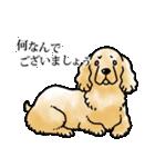 かしこまり犬~ダイバーシティ編~(個別スタンプ:25)