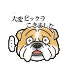 かしこまり犬~ダイバーシティ編~(個別スタンプ:26)
