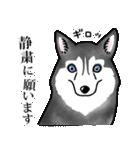 かしこまり犬~ダイバーシティ編~(個別スタンプ:29)