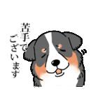 かしこまり犬~ダイバーシティ編~(個別スタンプ:30)