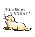 かしこまり犬~ダイバーシティ編~(個別スタンプ:32)