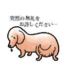 かしこまり犬~ダイバーシティ編~(個別スタンプ:34)