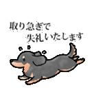 かしこまり犬~ダイバーシティ編~(個別スタンプ:36)
