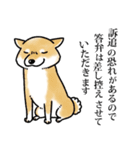 かしこまり犬~ダイバーシティ編~(個別スタンプ:38)