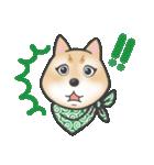 柴犬の顔だけイラストスタンプ(個別スタンプ:04)
