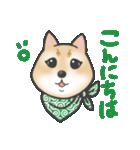 柴犬の顔だけイラストスタンプ(個別スタンプ:07)
