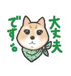 柴犬の顔だけイラストスタンプ(個別スタンプ:10)