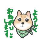 柴犬の顔だけイラストスタンプ(個別スタンプ:11)