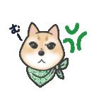 柴犬の顔だけイラストスタンプ(個別スタンプ:12)