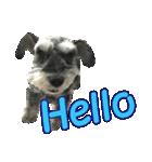 Hello Choko [敬語・挨拶、よく使う言葉](個別スタンプ:05)