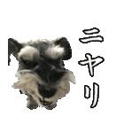 Hello Choko [敬語・挨拶、よく使う言葉](個別スタンプ:27)