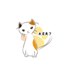 猫の文字スタンプ(個別スタンプ:32)