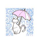 猫の文字スタンプ(個別スタンプ:40)