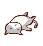 眠りにまつわるネコ(個別スタンプ:39)