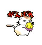がんばるデブ猫(個別スタンプ:06)