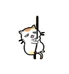 がんばるデブ猫(個別スタンプ:14)