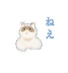 猫屋すたんぷ ふたつめ(個別スタンプ:3)