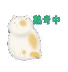 猫屋すたんぷ ふたつめ(個別スタンプ:4)