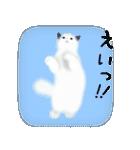猫屋すたんぷ ふたつめ(個別スタンプ:6)
