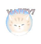 猫屋すたんぷ ふたつめ(個別スタンプ:11)