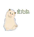 猫屋すたんぷ ふたつめ(個別スタンプ:16)