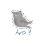 猫屋すたんぷ ふたつめ(個別スタンプ:25)