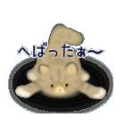 猫屋すたんぷ ふたつめ(個別スタンプ:34)
