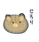 猫屋すたんぷ ふたつめ(個別スタンプ:35)