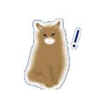 猫屋すたんぷ ふたつめ(個別スタンプ:39)