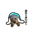 るうくん 第2弾(個別スタンプ:05)