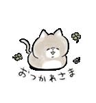 ほんわかこねこちゃん(個別スタンプ:05)