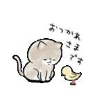 ほんわかこねこちゃん(個別スタンプ:06)