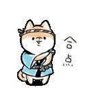 ほんわかしばいぬ<夏>(個別スタンプ:4)
