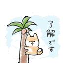 ほんわかしばいぬ<夏>(個別スタンプ:9)