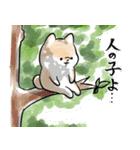 ほんわかしばいぬ<夏>(個別スタンプ:35)
