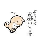 ほんわかしばいぬ<夏>(個別スタンプ:37)
