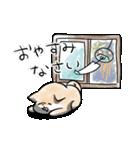 ほんわかしばいぬ<夏>(個別スタンプ:40)