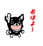 チワワのパティ★日常スタンプ(個別スタンプ:01)