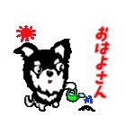 チワワのパティ★日常スタンプ(個別スタンプ:02)