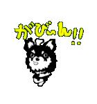 チワワのパティ★日常スタンプ(個別スタンプ:08)