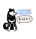 Every Day Dog 黒柴 日本語(個別スタンプ:01)