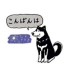 Every Day Dog 黒柴 日本語(個別スタンプ:03)