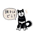 Every Day Dog 黒柴 日本語(個別スタンプ:05)